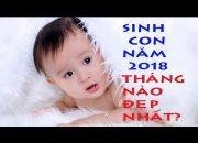 Tư vấn cho mẹ cách chọn tháng sinh con tốt trong năm 2018