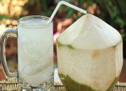 Trong thai kỳ mẹ đừng quên món nước dừa bổ dưỡng