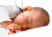 Cảnh báo sốt rét ở trẻ em đã trở lại ở tp. HCM