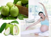 Dinh dưỡng cho mẹ bầu ăn ổi tốt cả cho thai nhi