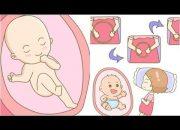 """7 cách """"CHƠI ĐÙA"""" cùng thai nhi để con THÔNG MINH từ trong bụng mẹ"""