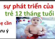 chăm soc trẻ sơ sinh 12 tháng tuổi như thế nào/ sự phát triển của trẻ 12 tháng tuổi như thế nào