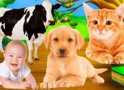 Dạy Bé Nhận Biết Các Con Vật Dễ Hiểu Cho Bé Tập Nói – Dạy Bé Học Online