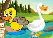 Dạy bé tập nói con vật | em học đọc Tiếng Việt qua các loài động vật con vịt |Dạy trẻ thông minh sớm