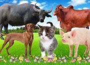 Dạy bé các con vật | bé đọc tên động vật rừng , nông trại | giúp bé phát triển tư duy  # 1