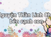 66.XIN CHA DẠY CON | TKH 2013 – CHUYỆN CỦA EM