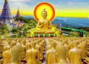 Nghe Lời Phật Dạy Để Giác Ngộ Bớt Khổ Đau TRẦN GIAN LÀ GÁC TRỌ