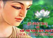 Nghe Lời Phật dạy – Về Số Mệnh Con Người – Cách Cải tạo Tướng mệnh – Rất Hay
