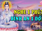 Hạnh Phúc Hay Khổ Đau – Nghe Lời Phật Dạy Mỗi Đêm Để Tâm An Thoát Khỏi Buồn Đau Phiền Não #HAY