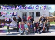 Trường Mẫu Giáo Ở Mỹ Cách Người Mỹ Dạy Trẻ