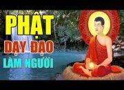 Nghe Lời Phật Dạy Mỗi Đêm Con Cháu Hiếu Thảo Gia Đạo Bình An May Mắn