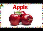Dạy bé các loại trái cây quả bằng tiếng Anh | bé học hoa quả giúp bé thông minh| ECE