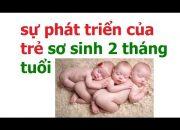 Chăm sóc trẻ sơ sinh 2 tháng tuổi như thế nào/ sự phát triển của trẻ 2 tháng tuổi