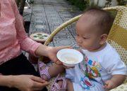 Dạy trẻ thông minh sớm phương pháp Glenn Doman, Sampo 1 tuổi mê món chè bưởi.