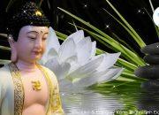 Khi Bế Tắc Tuyệt Vọng – Hãy Nghe Lời Phật Dạy Tiêu Tan Mọi Phiền Não Khổ Đau