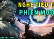 Trước Khi Ngủ Nghe Lời Phật Dạy Này Ngủ Ngon Tiêu Tan Phiền Muộn Tài Lộc May Mắn Ùn Ùn Kéo Về Nhà