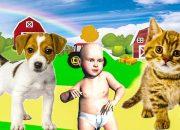 Các Con Vật Hay Nhất Cho Bé Nhận Biết và Tập Nói – Dạy Bé Học Online
