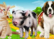 Dạy các con vật cho bé ngoan và thông minh hơn hay nhất