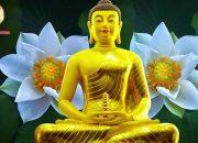 Nghe Lời Phật Dạy Thay Đổi Số Phận – Cải Tạo Tướng Mệnh – Bí quyết cải tạo tướng mệnh – #2