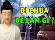Đêm Trắn Trọc Khó Ngủ Nghe Lời Phật Dạy Mục Đích ĐẾN CHÙA Là Gì, Đừng Để Phải Chịu Quả Báo