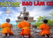 Những Lời Phật Dạy Đạo Làm Con rất hay – Bạn Rất Có Duyên Với Phật Khi Nghe Được Video Này
