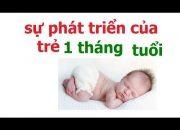 chăm sóc trẻ sơ sinh 1 tháng tuổi như thế nào/sự phát triển của trẻ sơ sinh 1 tháng tuổi