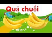 Dạy bé tập nói các loại quả tiếng việt | em học đọc tên trái cây qua hình ảnh