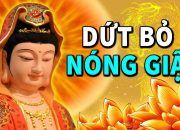 Kể Truyện Đêm Khuya, Nghe Lời Phật Dạy DỨT BỎ NÓNG GIẬN Để Hết Khổ Đau Phiền Não Tâm An Ngủ Ngon