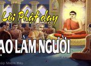 Lời Phật Dạy Về Đạo Làm Người rất hay P3, Phật pháp Nhiệm màu