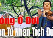 Đêm khó ngủ nghe lời Phật dạy – Con Người Ăn Ở làm sao để tu Nhân tích Đức – Phật Pháp Vô Biên