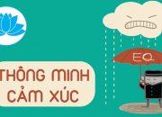 EQ trí thông minh cảm xúc và cách rèn luyện | HatBuiNho