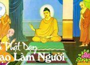 Nghe Lời Phật Dạy Để Có Hạnh Phúc An Vui Trong Cuộc Sống – Phần 5 – Kinh Phật Dạy Làm Người