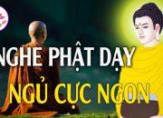 Đêm Trằn Trọc – Nghe Phật Dạy Ngủ Cực Ngon Cuộc Sống Thanh Thản May Mắn Vô Cùng – Vi Diệu Pháp Âm.