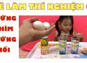 Dạy con thông minh – Bé làm thí nghiệm Trứng chìm trứng nổi. Giúp bé khám phá, phát triển tư duy