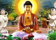 Buổi Tối Khó Ngủ Nghe Lời Phật Dạy Con Người Ăn Ở Làm Sao Để Tu Nhân Tích Đức, Lòng Bình An Ngủ Ngon