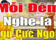 """Mỗi Đêm Nghe""""Phật Dạy""""Sống Ở Đời Phải Học Cách Nhẫn Nhịn""""1 Điều Nhịn Là Chín Điều Lành""""#Phật_Tại_Tâm"""