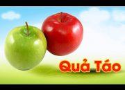 Dạy bé học các loại quả   Dạy bé nhận biết các loại trái cây   Dạy bé học