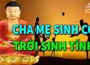 Ai Đang Hàng Ngày Buồn Khổ Vì Con Cái Hãy Nghe Phật Lý Giải  Nguyên Nhân Mà Ít Ai Biết Được