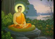?TRỰC TIẾP   TT. Nhật Từ thuyết giảng trong Khóa tu Tuổi Trẻ Hướng Phật, ngày 25-10-2020