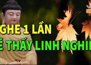 Đêm Trằn Trọc Khó Ngủ Nghe Lời Phật Dạy 1 lần Sẽ Thấy Phiền Não Tan  Biến Tâm An Ngủ Ngon