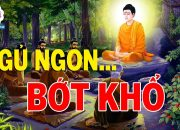 Mỗi Đêm Nghe Lời Phật Dạy Ngủ Cực Ngon – Con Người Ăn Ở Làm Sao Để Tu Nhân Tích Đức Cho Đời Bớt Khổ