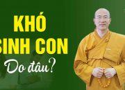 Khó sinh con – nguyên nhân do đâu? | Vấn Đáp Phật Pháp | Thầy Thích Trúc Thái Minh