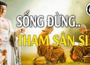 Sống Không Tham Không Sân – Nghe Lời Phật Dạy Để Thoát Khỏi Phiền Não Và Khổ Đau – Audio Pháp Hay.