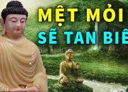 Mệt Mỏi Và Chán Nản Sẽ Tan Biến – Khi Nghe Lời Phật Dạy này Tĩnh Tâm An Lạc May mắn Tự Đến với Bạn