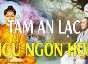 Nghe Lời Phật Dạy Thấm Thía Hay Nhất Ở Đời Đừng Chỉ Sống Vì TIỀN Cho Tâm An Lạc Ngủ Ngon Hơn #MỚI.