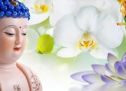 Vì Sao Kiếp Này Số Mệnh Bạn Long Đong  – Nghe Lời Phật Dạy Cải Tạo Vận Mệnh – #Mới Nhất