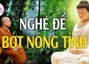 Nghe Phật Dạy Để Bớt Nóng Tính Cho Đời Thêm An Lạc Hạnh Phúc – Vi Diệu Pháp Âm.