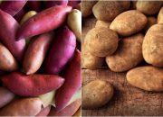 Khoai lang và khoai tây loại nào tốt cho sức khỏe hơn?