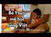 Bé 1 tuổi ép ba mẹ dạy tiếng Việt như thế nào?  US Education – Gia Đình Viễn Xứ