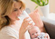 Sau sinh bao lâu thì được uống sữa tươi